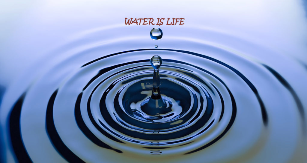 water is life understand its importance